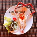 Food@Asita (32/66)