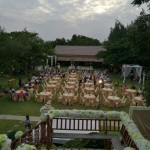 Wedding Party (20/180)